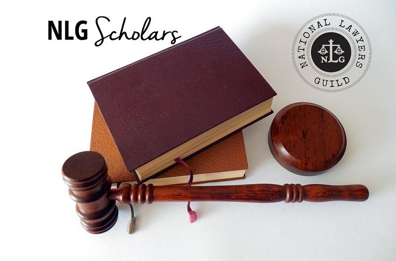 nlg-scholars-banner-2